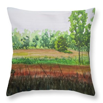 Prairie Grass Field Throw Pillow by Bethany Lee