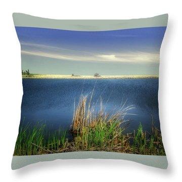 Prairie Lake Throw Pillow