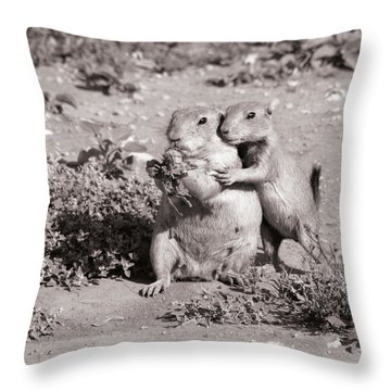 Prairie Love Throw Pillow