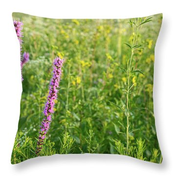 Prairie Panorama Throw Pillow