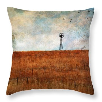 Prairie Past Throw Pillow