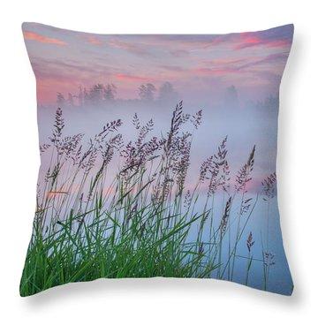 Throw Pillow featuring the photograph Prairie Pond Before Sunrise by Dan Jurak