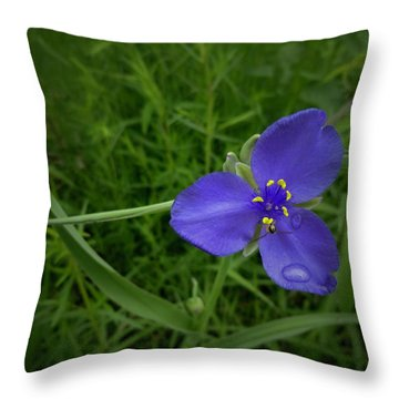 Prairie Rain Throw Pillow by Tim Good