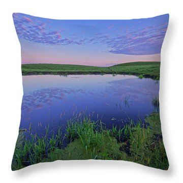 Prairie Reflections Throw Pillow