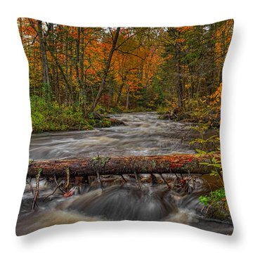 Prairie River Tree Crossing Throw Pillow