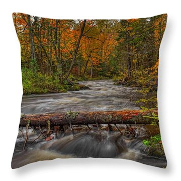 Prairie River Tree Crossing Throw Pillow
