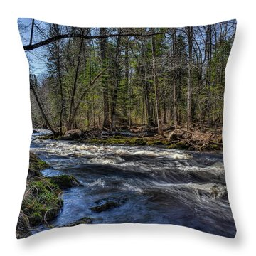 Prairie River White Riffles Throw Pillow