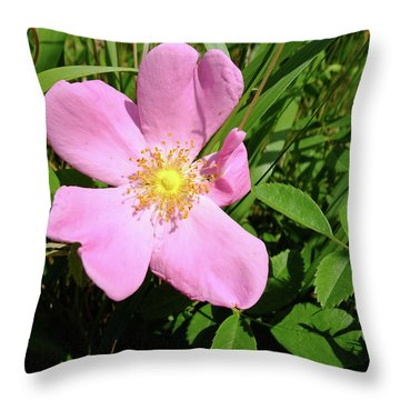 Throw Pillow featuring the photograph Prairie Rose by Scott Kingery