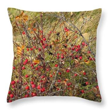 Prairie Rosehips Throw Pillow