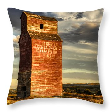 Prairie Sentinel Throw Pillow