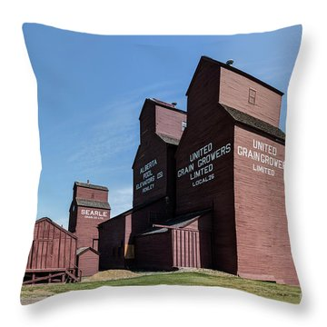 Prairie Sentinels I Throw Pillow