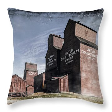 Prairie Sentinels II Throw Pillow