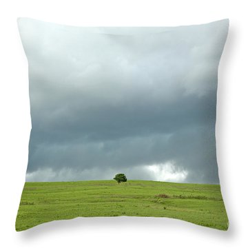 Prairie Strm Throw Pillow