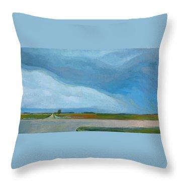 Prairie Weather Throw Pillow