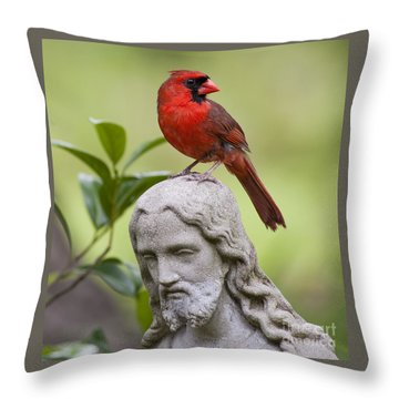 Praise The Lord Throw Pillow by Bonnie Barry