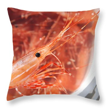 Prawns Throw Pillow