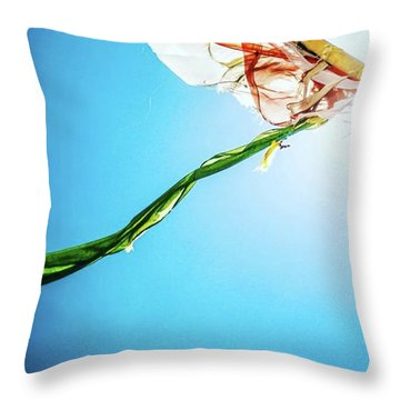 Prayer Flags Blowing In The Wind Throw Pillow