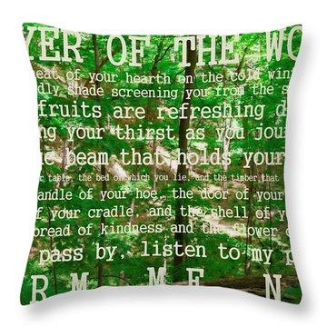 Prayer Of The Woods 2.0 Throw Pillow