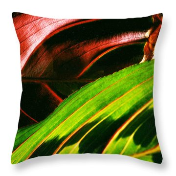 Prayer Plant Passing Throw Pillow