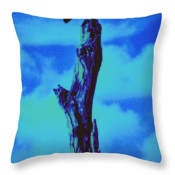 Praying Black Bird Grace In Nature Throw Pillow