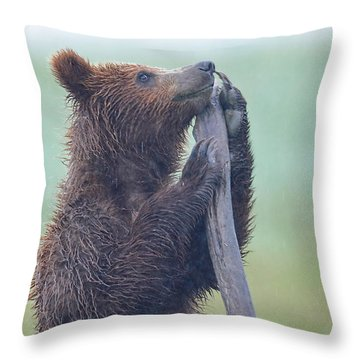 Praying For The Rain To Stop Throw Pillow