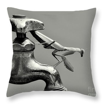 Grasshopper Throw Pillows