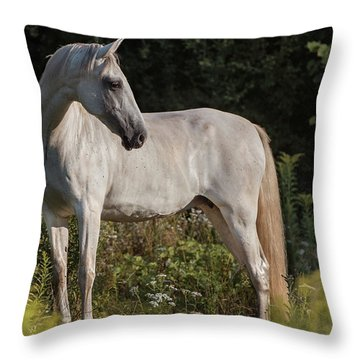 Pre Beauty Throw Pillow