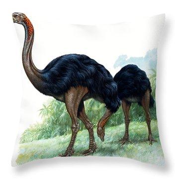 Pre-historic Birds Throw Pillow