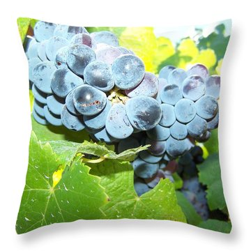 Pre Vino  Throw Pillow by Pamela Walrath