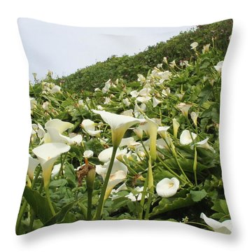 Throw Pillow featuring the photograph Preaching To The Choir by Marie Neder