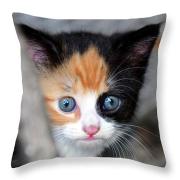 Throw Pillow featuring the photograph Precious by David Lee Thompson
