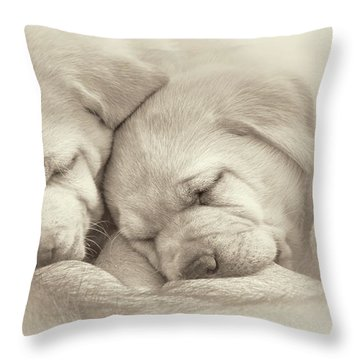 Throw Pillow featuring the photograph Precious Lab Puppies Nursing Sepia by Jennie Marie Schell