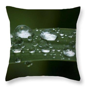 Precious Water Throw Pillow