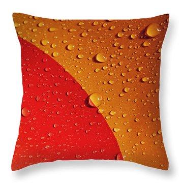 Precipitation Throw Pillow