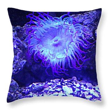 Predatory Terrestrial Sea Anemone Throw Pillow