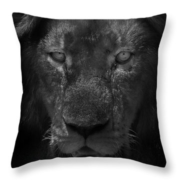 Preditor Eyes Throw Pillow