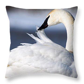 Preening Throw Pillow