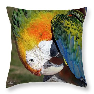 Preening Macaw Throw Pillow by Melissa Messick