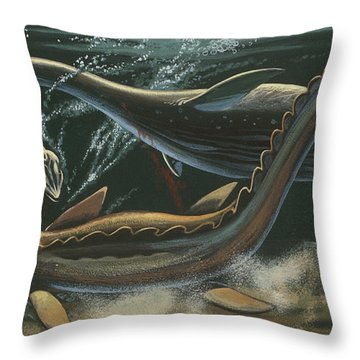 Prehistoric Marine Animals, Underwater View Throw Pillow by American School