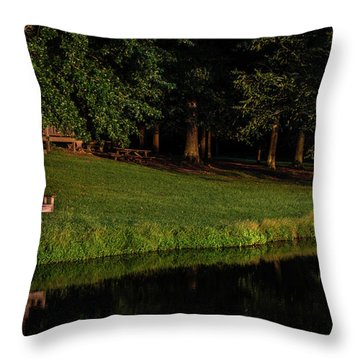 Prelude To A Dream Throw Pillow