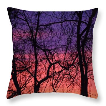 Prelude To The Cold Throw Pillow