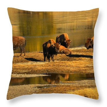 Throw Pillow featuring the photograph Preparing To Cross The Yellowstone River by Adam Jewell