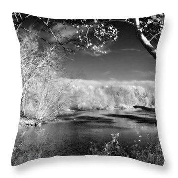 Presence  Throw Pillow by Thomas  MacPherson Jr