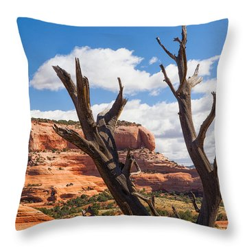 Throw Pillow featuring the photograph Preserved by Daniel George
