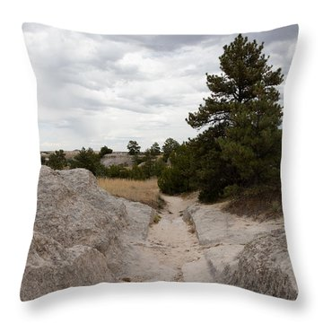 Preserved Wagon Ruts Of The Oregon Trail On The North Platte River Throw Pillow by Carol M Highsmith