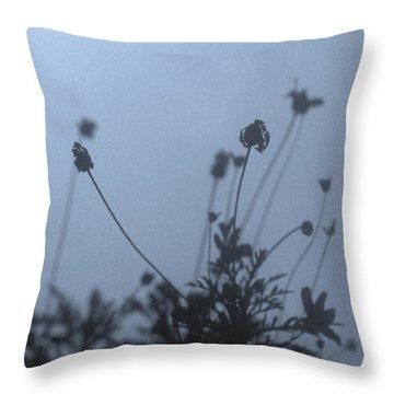 Pressed Daisy Bush Blue Throw Pillow by Stan Magnan