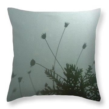 Pressed Daisy Bush Green Throw Pillow by Stan Magnan