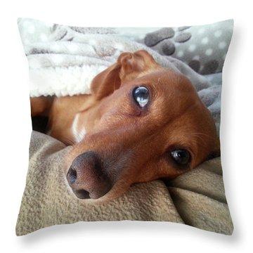 Pretzel By Chera Throw Pillow by John Loreaux