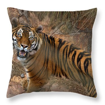 Pretoria Zoo Throw Pillow
