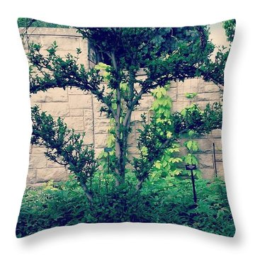Pretty! 💚 #kauffmangarden Throw Pillow